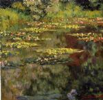 framing artwork - water lilies 27 by claude monet
