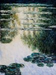 water lilies v by claude monet paintings