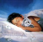 cat nap by donald zolan original paintings