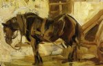 franz marc small horse study paintings 34071