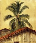 house watercolor paintings - palm trees and housetops ecuador by frederic edwin church