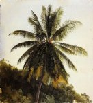 frederic edwin church original paintings - palm trees west indies by frederic edwin church