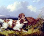 spaniels flushing game by george armfield prints