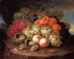 george forster famous paintings - still life with fruit and bird s nest by george forster