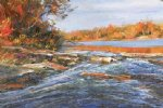 george gallo art - des plaines river by george gallo