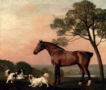 george stubbs a bay hunter with two spaniels paintings