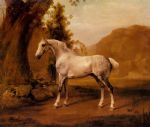 george stubbs a grey stallion in a landscape painting