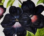 georgia o keeffe acrylic paintings - black and purple petunias by georgia o keeffe