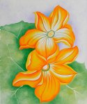 georgia o keeffe acrylic paintings - squash blossoms by georgia o keeffe