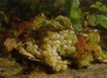 a still life with grapes in a basket by geraldine jacoba van de sande bakhuyzen painting