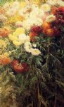 pet art - chrysanthemums garden at petit gennevilliers by gustave caillebotte