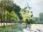 tree original paintings - lane bordered by trees by gustave caillebotte