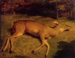 gustave courbet art - dead deer by gustave courbet