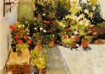sorolla art - a rooftop with flowers by joaquin sorolla y bastida