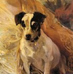 portrait of a jack russell by joaquin sorolla y bastida painting
