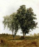 john frederick kensett famous paintings - a study of trees by john frederick kensett