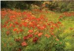 john ottis adams art - in poppyland by john ottis adams