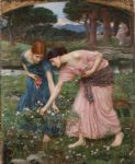 rose famous paintings - gather ye rosebuds while ye may i by john william waterhouse