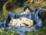 julius adam watercolor paintings - two kittens by julius adam