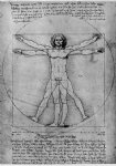 leonardo da vinci watercolor paintings - vitruvian man study of proportions from vitruvius s de architectura by leonardo da vinci