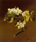 martin johnson heade print - a spray of apple blossoms by martin johnson heade