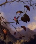 martin johnson heade print - amethyst woodstar by martin johnson heade