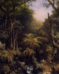 forest original paintings - brazilian forest by martin johnson heade