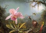 martin johnson heade cattelya orchid and three brazilian hummingbirds painting