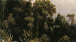 forest original paintings - forest study brazil by martin johnson heade