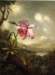 martin johnson heade hummingbird and orchid sun breaking through the clouds painting