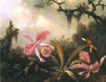 martin johnson heade orchids and crimson topaz hummingbird posters