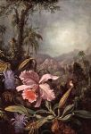 martin johnson heade orchids passion flower and hummingbirds painting