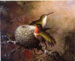 two ruby throats by their nest by martin johnson heade painting