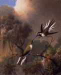 martin johnson heade two sun gems on a branch painting