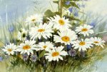 original paintings famous paintings - a bunch of wild chrysanthemums by original paintings