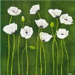 flower artwork - some white poppy flowers by original paintings