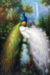 peacock artwork - tow peacocks by original paintings