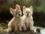 australian original paintings - two lovely australian terrier by original paintings