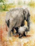 two elephants by original paintings