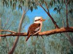original australia bird kookaburra paintings
