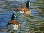 original canada birds geese in water painting