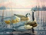 original goose canada bird painting 86470