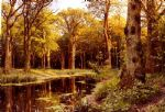 peder mork monsted famous paintings - a forest stream by peder mork monsted