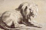 lion print - etude of lion by peter paul rubens