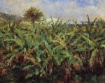 field of banana trees by pierre auguste renoir paintings