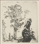 rembrandt van rijn sketch of a tree painting 25776