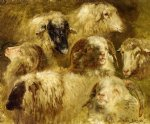 rosa bonheur original paintings - heads of ewes and rams by rosa bonheur