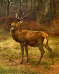 stag in an autumn landscape by rosa bonheur acrylic paintings