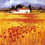 poppies by steve thoms painting