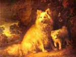 thomas gainsborough pomeranian bitch and pup painting